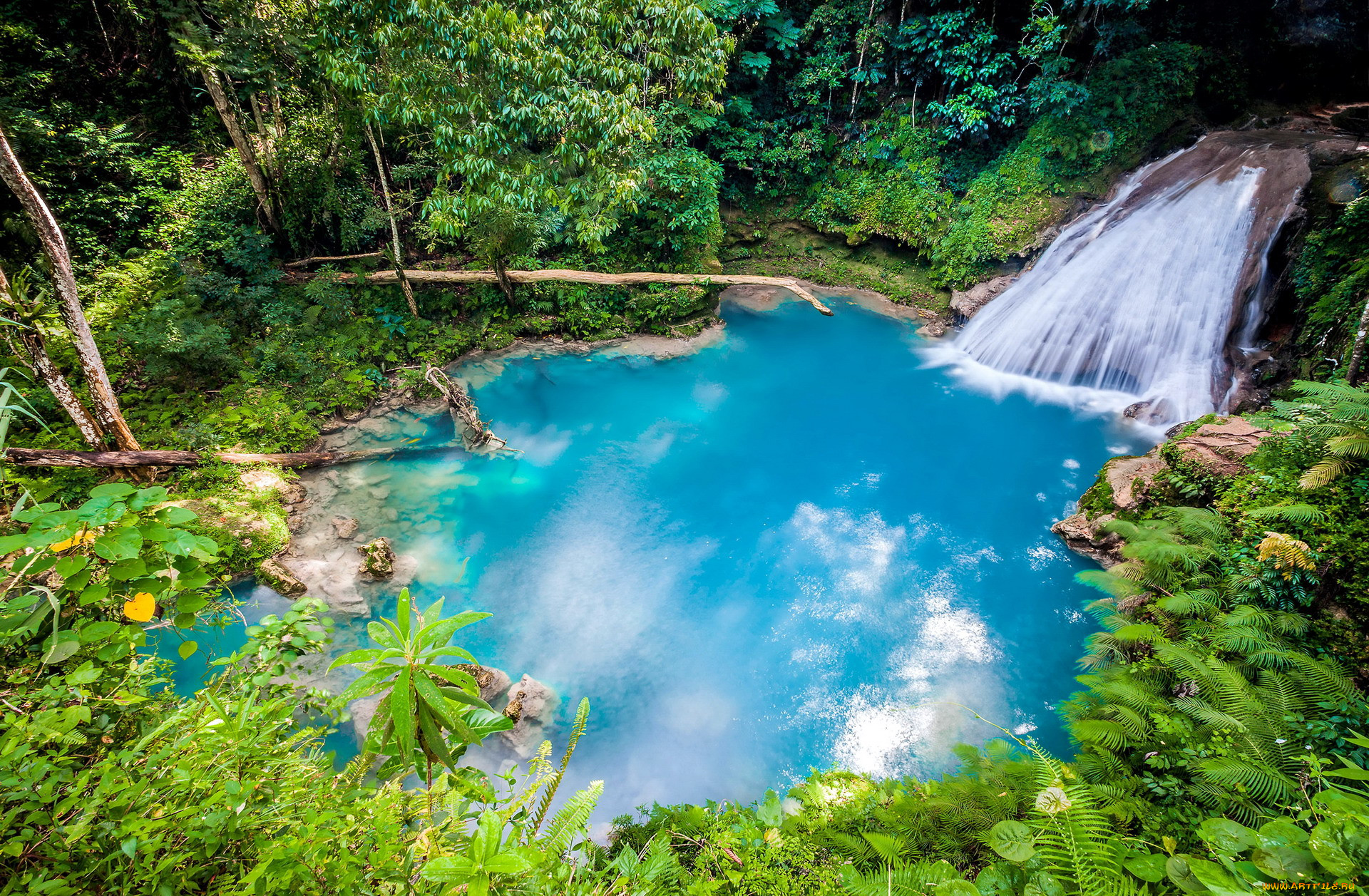 the blue hole in ocho rios,  jamaica, природа, водопады, the, blue, hole, in, ocho, rios, jamaica
